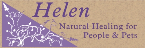 Natural healing for pets and people