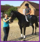 Healer for horses